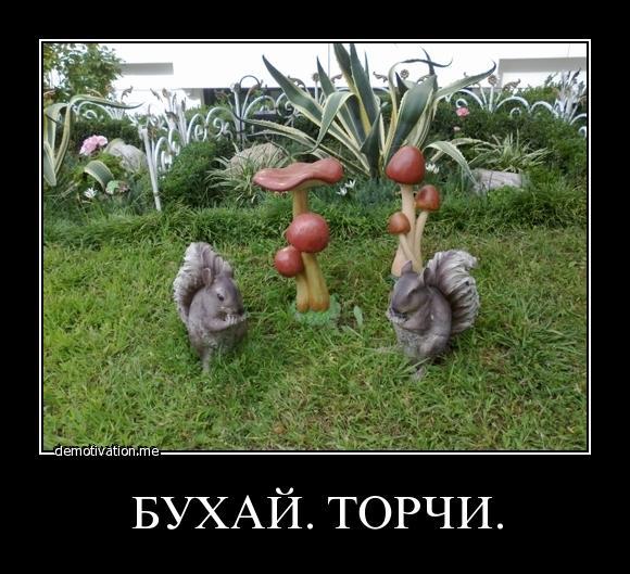 http://hchp.ru/gallery/2011/Nov/99/99_23111.jpg