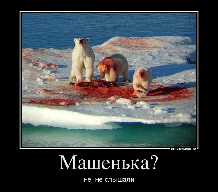 http://hchp.ru/gallery/2012/Jul/99/99_24293.jpg